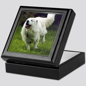 "Great PyreneesKeepsake Box ""Action"""